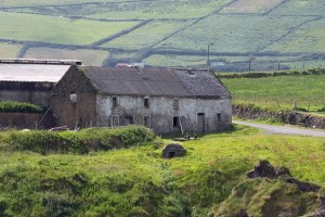 Kerry Farm