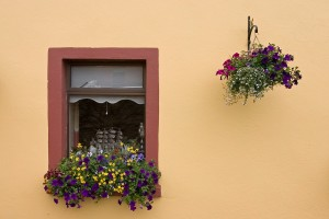 Killarney Window